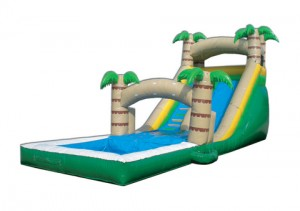 Wet-Dry-Tropical-Water-Slide-300x211